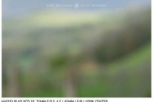 Hasselblad XCD 35-75mm | 45mm | Close Focus | Center | f/8