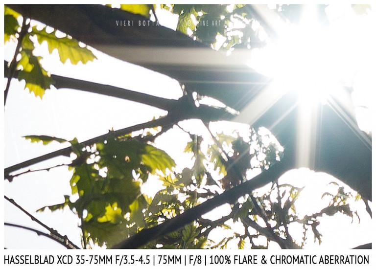Hasselblad XCD 35-75mm | 75mm | Flare & CA | Detail | f/8