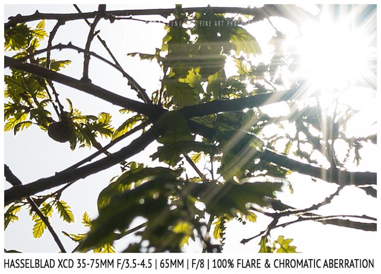 Hasselblad XCD 35-75mm | 65mm | Flare & CA | Detail | f/8