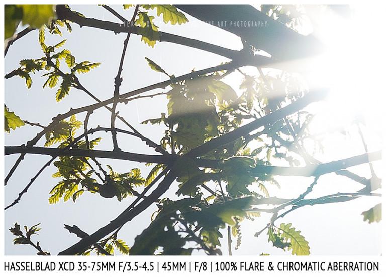 Hasselblad XCD 35-75mm | 45mm | Flare & CA | Detail | f/8