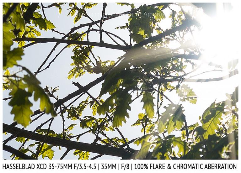 Hasselblad XCD 35-75mm | 35mm | Flare & CA | Detail | f/8