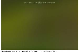 Hasselblad XCD 35-75mm | 75mm | Close Focus | Center | f/4.5