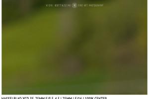 Hasselblad XCD 35-75mm | 75mm | Close Focus | Center | f/16